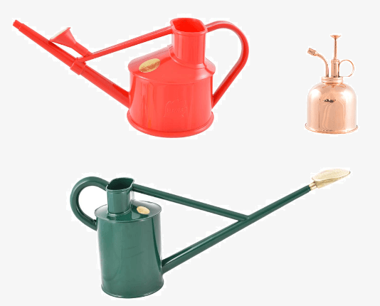 Watering Cans and Roses
