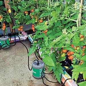 Growbag & Greenhouse Watering Kits