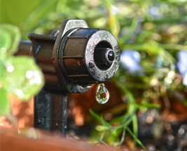 Micro Irrigation Drippers
