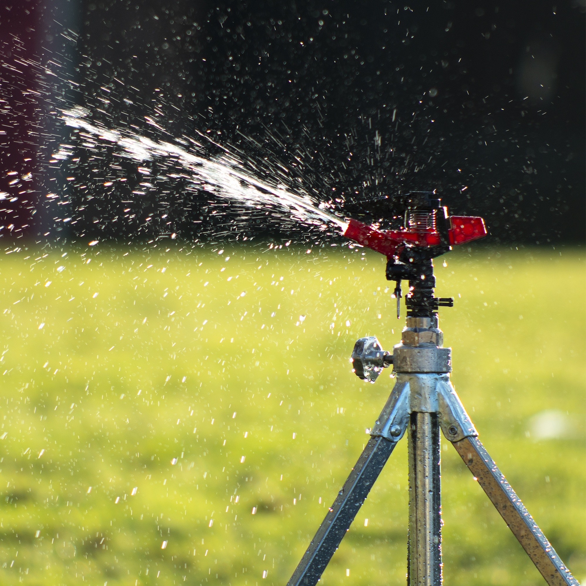 Sprinkler Heads